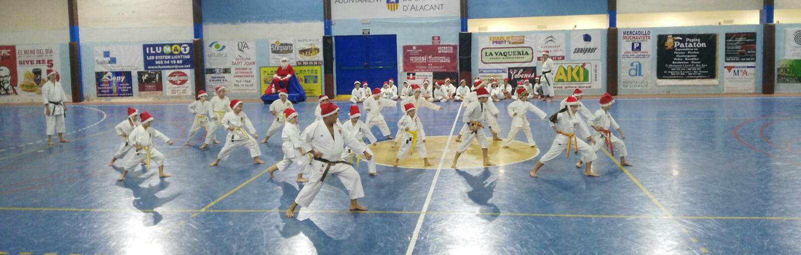 Exhibición karate navidad 2016